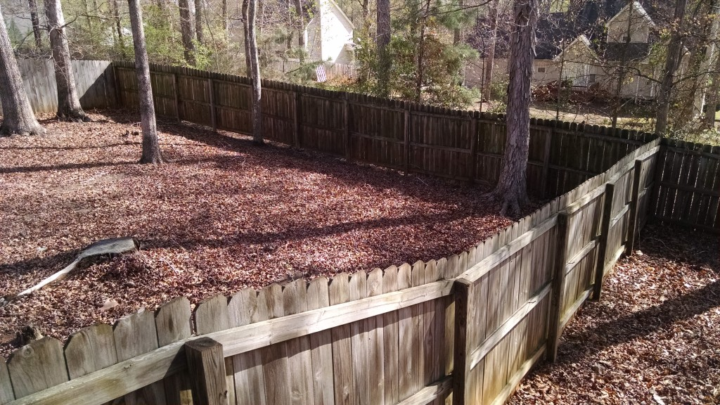 Needs Fence Cleaning - Stain-N-Seal Solution
